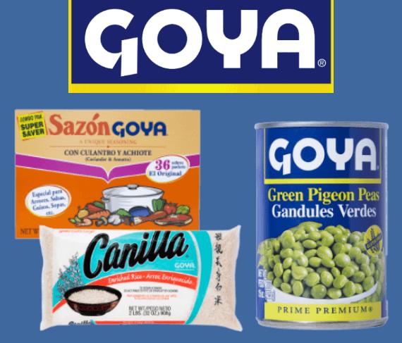 Goya_WebSlidder